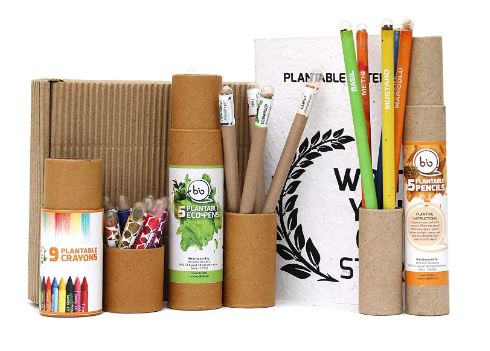 biodegradable stationary